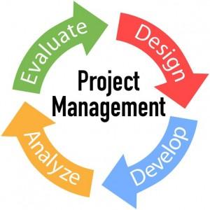 Program Project image 300x300 Project Management